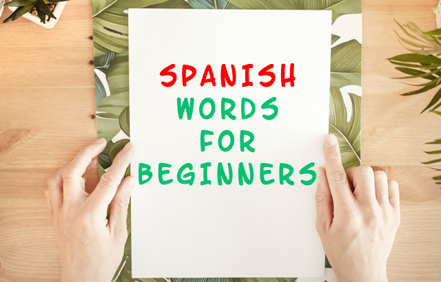 spanish words for beginners