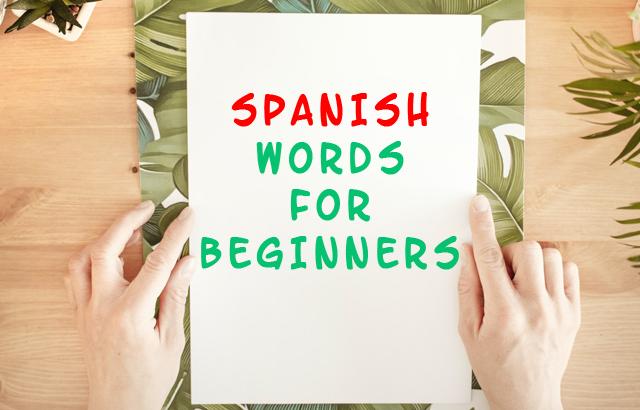 spanish words for beginners